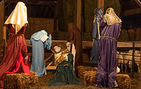 Nativity with Live Animals